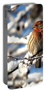 Basking In Winter Light Portable Battery Charger