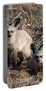 Bat Eared Fox Kits Portable Battery Charger