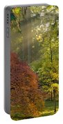 Bathed In Morning Light Portable Battery Charger