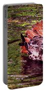 Bathing Red Tailed Hawk Portable Battery Charger
