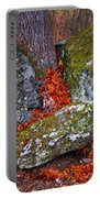 Battlefield In Fall Colors Portable Battery Charger