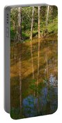 Bayou Reflections Portable Battery Charger