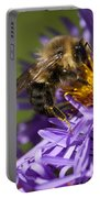 Be My Bee... Portable Battery Charger