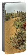 Beach Dune  Portable Battery Charger