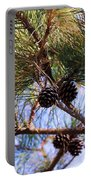 Beach Pine Portable Battery Charger