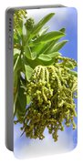 Beach Tree Seed Pods Portable Battery Charger