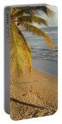 Beach Under Golden Palm Portable Battery Charger