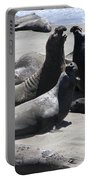 Beachmasters - Elephant Seals Portable Battery Charger