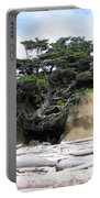 Beachtree Portable Battery Charger
