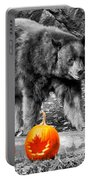 Bear And Pumpkins Too Portable Battery Charger