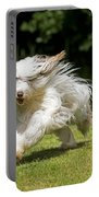 Bearded Collie Running Portable Battery Charger