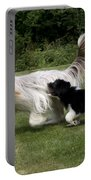 Bearded Collies Playing Portable Battery Charger by John Daniels
