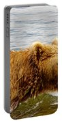 Bear's Eye View Of Swimming Grizzly In Moraine River In Katmai Portable Battery Charger