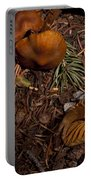 Beartooth Mountain Mushrooms   #3661 Portable Battery Charger
