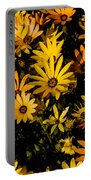 Beautiful African Daisies Portable Battery Charger