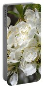 Beautiful Apple Blossoms Portable Battery Charger