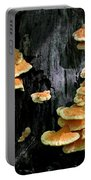 Beautiful Bracket Fungus Portable Battery Charger