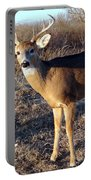 Beautiful Buck Portable Battery Charger