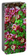 Beautiful Columbine   Portable Battery Charger