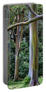 Beautiful Eucalyptus Portable Battery Charger