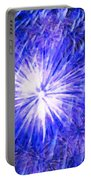 Beautiful Fireworks 11 Portable Battery Charger