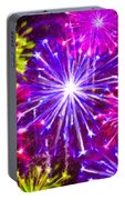 Beautiful Fireworks  6 Portable Battery Charger