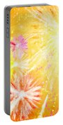 Beautiful Fireworks Portable Battery Charger