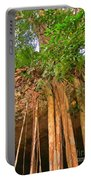 Beautiful Forest Portable Battery Charger