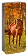 Beautiful Horse In The Autumn Aspen Colors Portable Battery Charger by James BO  Insogna