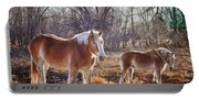 Beautiful Horses Portable Battery Charger