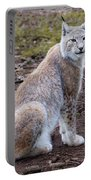 Beautiful Lynx Portable Battery Charger