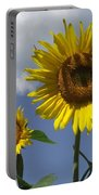 Beautiful Portable Battery Charger