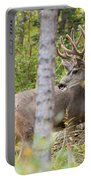 Beautiful Mule Deer Buck With Velvet Antler  Portable Battery Charger
