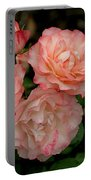 Beautiful Peach Roses Portable Battery Charger