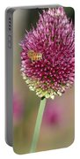 Beautiful Pink Flower With Bee Portable Battery Charger
