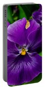 Beautiful Purple Pansies Portable Battery Charger