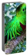Beautiful Quetzal 2 Portable Battery Charger