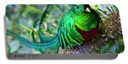 Beautiful Quetzal 4 Portable Battery Charger