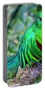 Beautiful Quetzal 4 Portable Battery Charger by Heiko Koehrer-Wagner