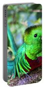 Beautiful Quetzal 5 Portable Battery Charger