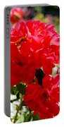 Beautiful Red Roses Portable Battery Charger