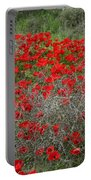 Beautiful Red Wild Anemone Flowers In A Spring Field Portable Battery Charger