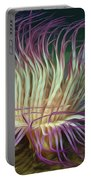 Beautiful Sea Anemone 1 Portable Battery Charger by Lanjee Chee