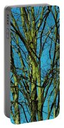 Beautiful Turquoise Sky Portable Battery Charger