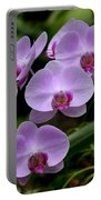 Beautiful Violet Purple Orchid Flowers Portable Battery Charger