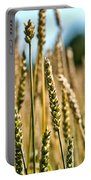 Beautiful Wheat Portable Battery Charger