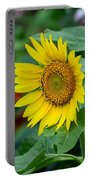 Beautiful Yellow Sunflower In Full Bloom Portable Battery Charger