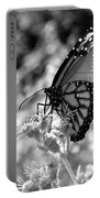 Butterfly Beauty In Nature Portable Battery Charger