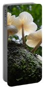 Beauty Of Mushrooms Argentina Portable Battery Charger