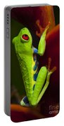 Beauty Of Tree Frogs Costa Rica 9 Portable Battery Charger